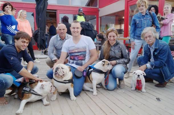 Baggy Bulldog Beach Walk