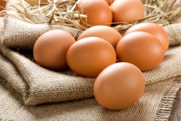 Holdbarhed køleskab udenfor æg kogte Skal du