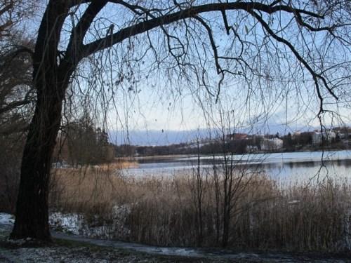 20111206-024114.jpg