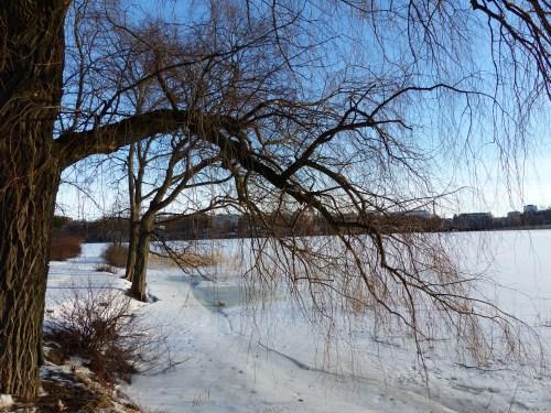 Toolonlahti Helsinki
