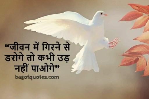 """lifetime motivational quotes in hindi """"जीवन में गिरने से डरोगे, तो कभी उड़ नहीं पाओगे"""""""