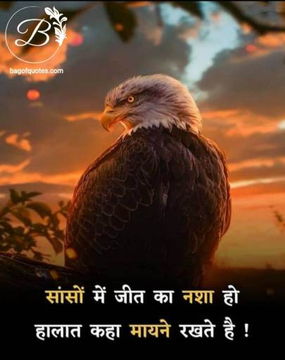 अगर जीत का नशा हमारे सांसों में होगा तो फिर हमारे हालात कुछ मायने नहीं रखती hindi quotes on sucess