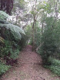winaca eco cultural village trail 4