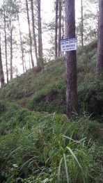 yellow trail camp john hay baguio usa private property