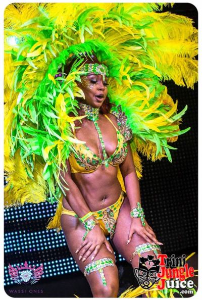 miami carnival costume