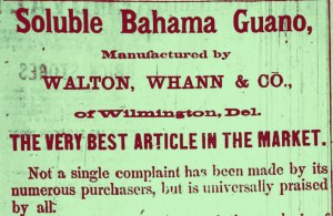 The lucayans bahamianology guano once an important natural resource in the bahamas 1874 fandeluxe Gallery