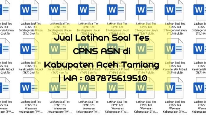 Soal Tes CPNS ASN di Aceh Tamiang