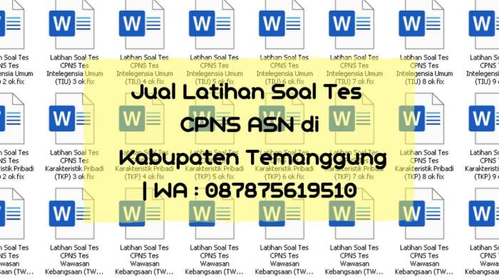 Soal Tes CPNS ASN di Kabupaten Temanggung