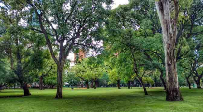 Plaza Alemania, remanso verde en Palermo