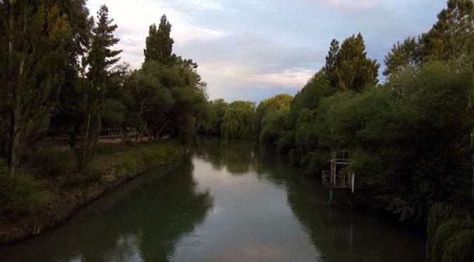 La víbora marrón del río Chubut en Gaiman