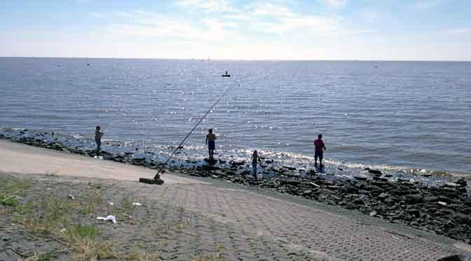 Aire, sol y alimento en la costa del río de la Plata en Vicente López