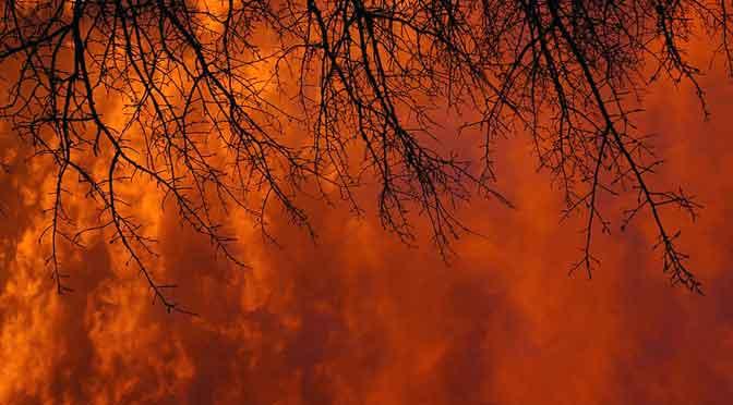 Incendios forestales en Australia: su dimensión frente a lugares famosos