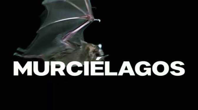 """""""Murciélagos"""", la película filmada en cuarentena, se estrenará el 2 de julio"""