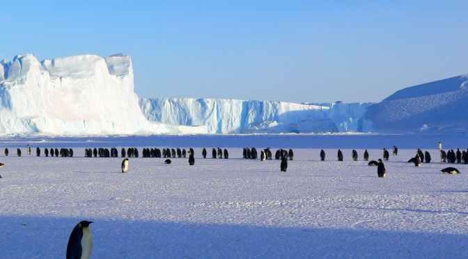 Silica Networks estudia conectar la Antártida con fibra óptica