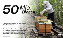 Rund 50 Millionen Bienen leben auf stillgelegten Bahnanlagen.