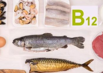 health-eat-these-things-daily-to-overcome-vitamin-b12-deficiency