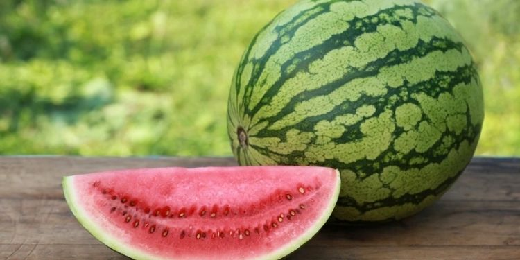 best-buy-to-pick-red-and-sweet-watermelon-buying-tarabooj-by-checking-colour-and-shape-tricks-to-buy-water-melon-know-how