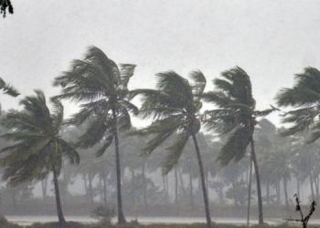 IMD Alert | strong winds in north arabian sea maharashtragujrat imd give yellow alert to ghat area including pune.