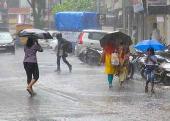 Rain in Maharashtra | 980 mm rain in 2 days in Mahabaleshwar! Tulsi dam area has the second highest rainfall of 895 mm in the state