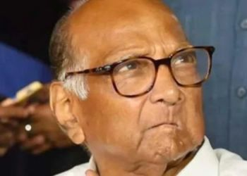 Sharad Pawar | first reaction given by ncp president sharad pawar on narayan rane offensive statement on cm uddhav thackeray