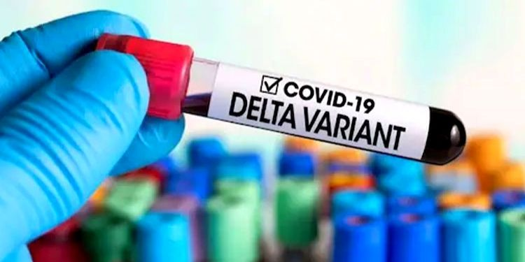 Delta Variant | nose infected with delta contains 1260 times more virus than normal covid 19 virus says research read here full detail about sars cov 2 delta variant