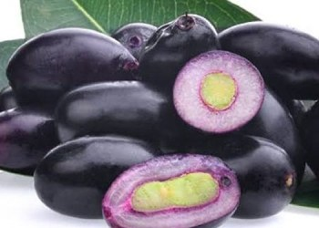 High Blood Pressure consume jamun seeds daily to control high blood pressure