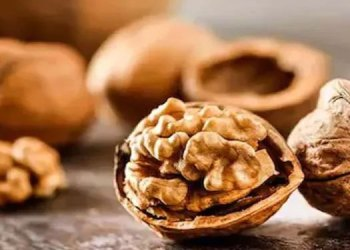 Heart Disease   studies research claims eating walnuts reduces the risk of heart disease lowers cholesterol level