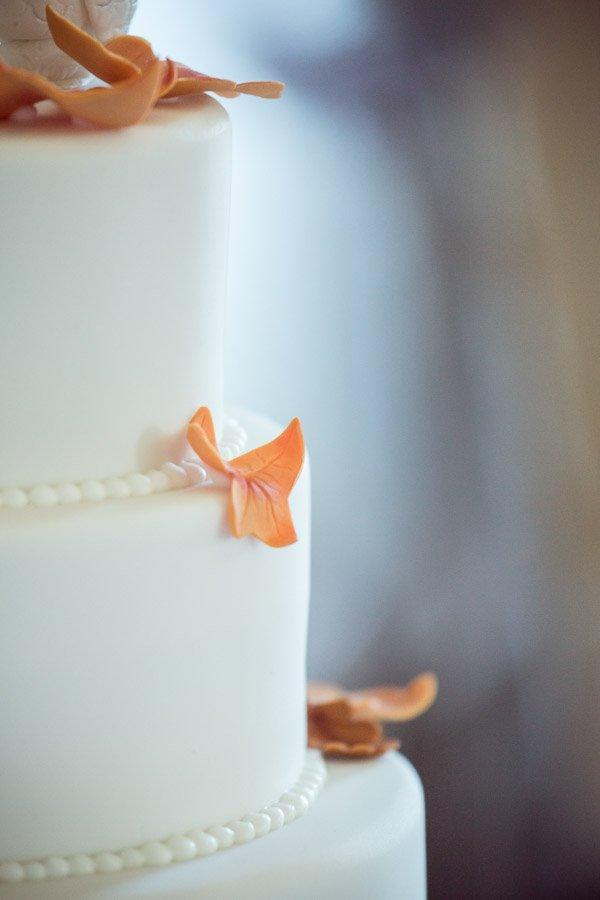 Autumnal cake