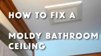 What To Use Get Rid Of Mold On Bathroom Ceiling | www ...