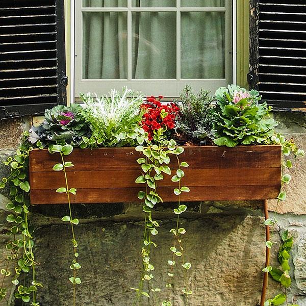 Window planter box for sale