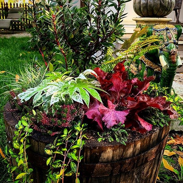 Wine barrel planter box