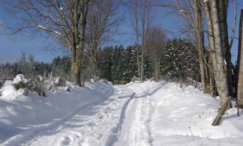 neige en forez