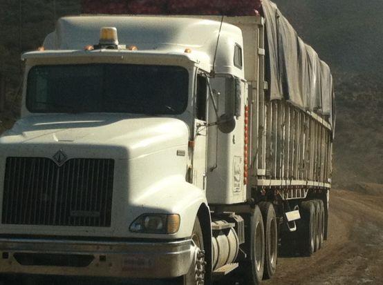 Trucker - Mex One
