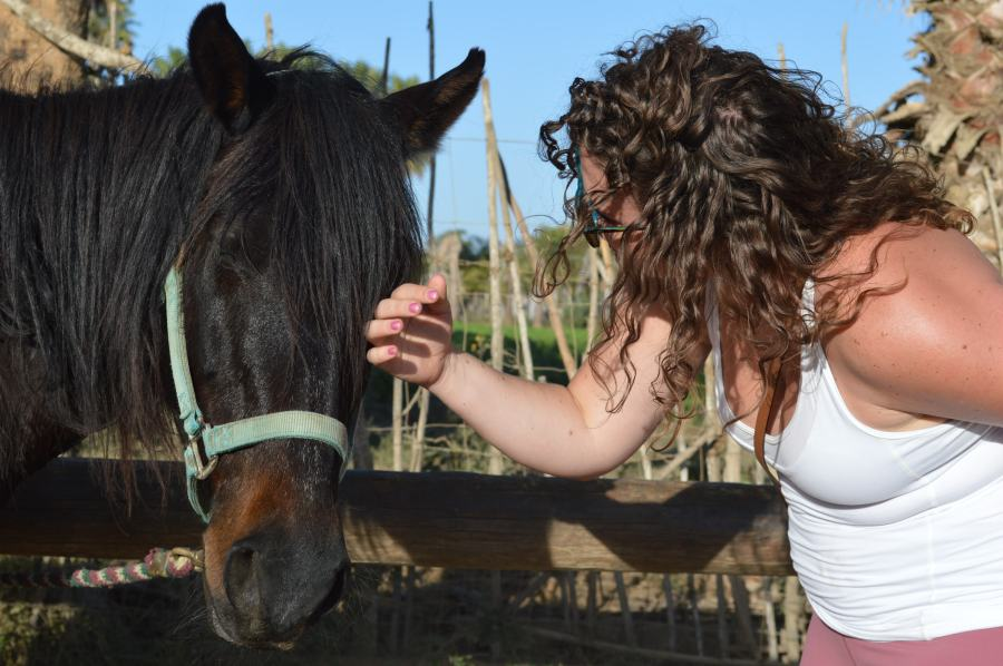 girl pets a horse