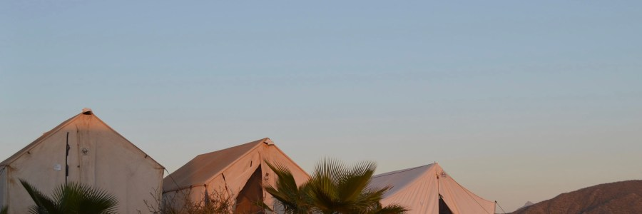 three canvas tents in the baja desert under a full moon