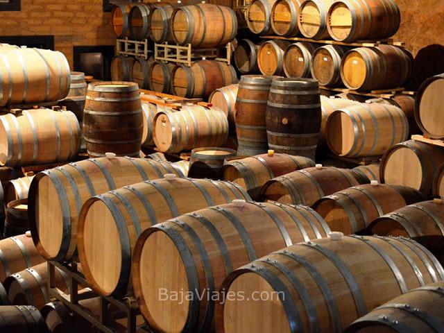 Barricas de vino en Barón Balché, Valle de Guadalupe.