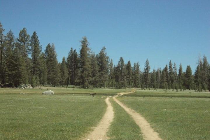 parque-nacional-sierra-san-pedro-martir-baja-california-2