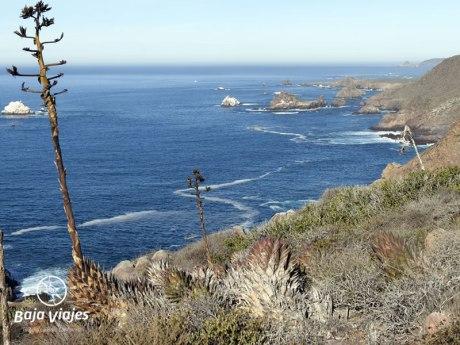 Paisaje costero en Baja California