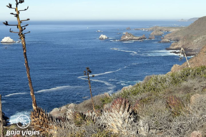 bufadora-paisaje-costero-baja-california-tours-800x600