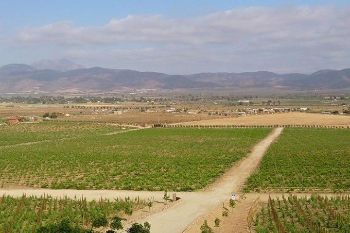 las-nubes-vinicola-valle-guadalupe-tours-1170x500