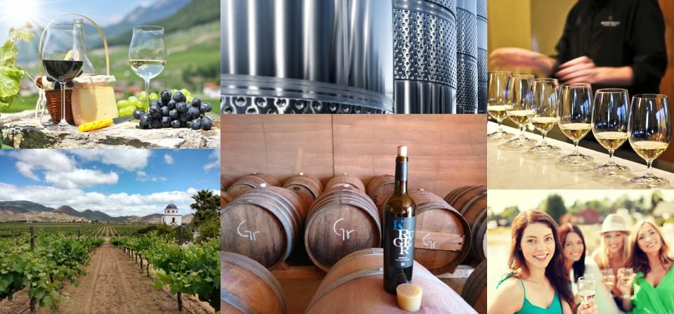 Collage Sabor a vino