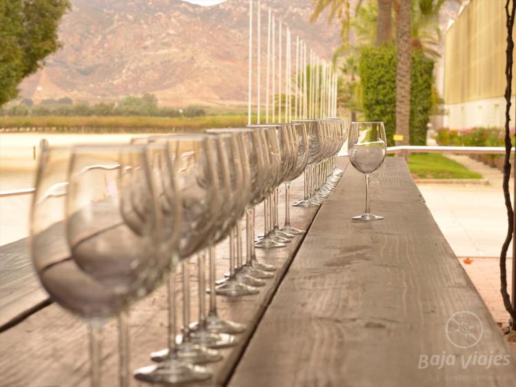 Degustacion de vinos en LA Cetto, Valle de Guadalupe
