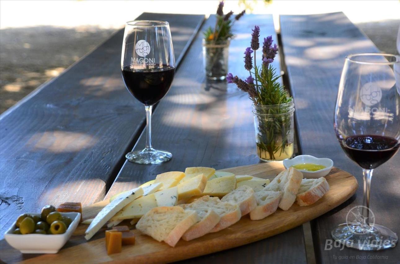Degustación de queso, pan y vino en Casa Magoni