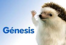 Cómo darse de baja en Génesis Seguros