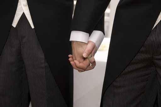 La Corte Constitucional de Austria autoriza el matrimonio homosexual 1