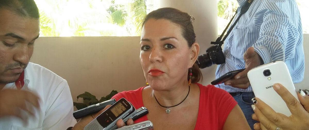 """""""Dolosas e irresponsables"""", las declaraciones de Navarrete: Erika Lührs"""