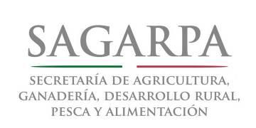 Sector agrícola, el más dinámico de la economía mexicana: Sagarpa 3