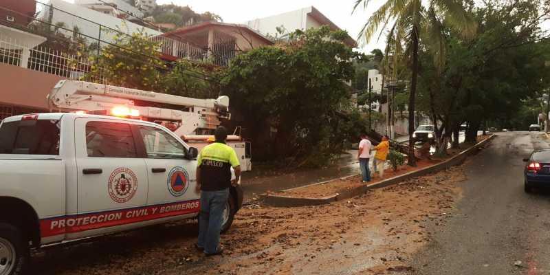 Apagones y arboles caídos provoca lluvia en Acapulco