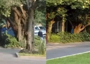 Encuentran cadáver desnudo colgado de árbol en Polanco 1