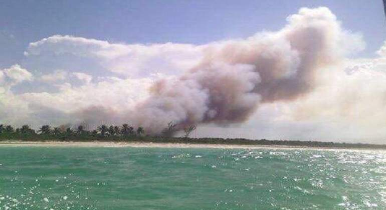 Restauración tras incendio en isla Holbox: Conanp
